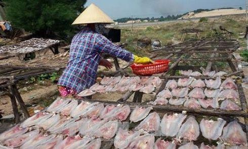 Phát hiện hàng loạt cơ sở chế biến cá khô sử dụng chất cấm độc hại