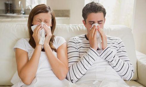 5 bài thuốc trị viêm mũi dị ứng vừa hiệu quả vừa an toàn