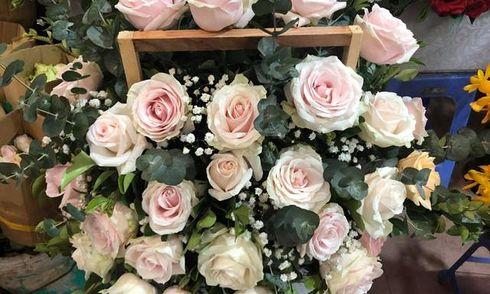 Các bóng hồng chờ đợi điều gì ngày Valentine?