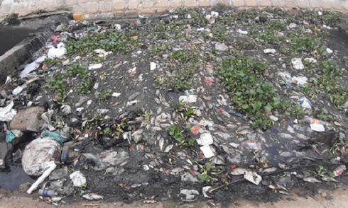 Đà Nẵng: Người dân bức xúc vì cá chết bốc mùi hôi nồng nặc