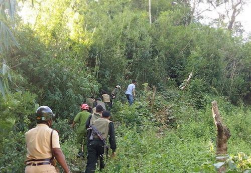 Cuộc trốn chạy trong rừng của nhóm cướp taxi ở Lâm Đồng - Ảnh 1