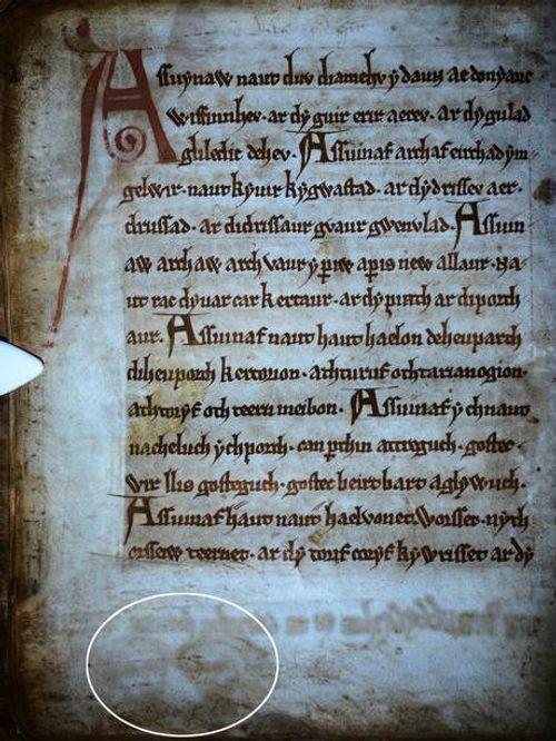 Rùng rợn gương mặt ma quái trên bản thảo thời Trung cổ - Ảnh 1