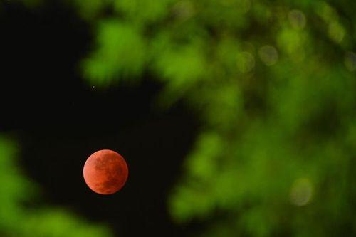"""""""Trăng máu"""" trùng Lễ Phục sinh cuối tuần này: Nhiều tin đồn lạ - Ảnh 3"""