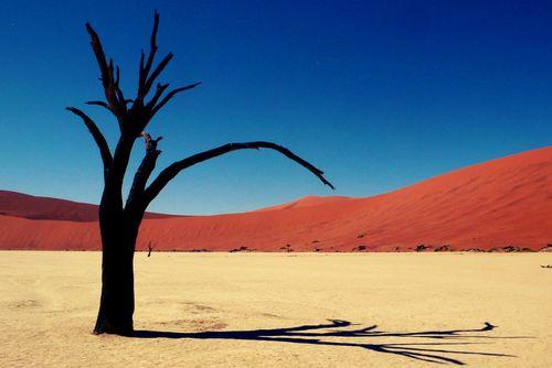 Đẹp mê hồn những vùng sa mạc nổi tiếng thế giới - Ảnh 1