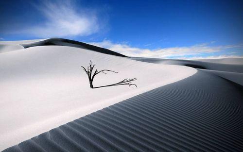 Đẹp mê hồn những vùng sa mạc nổi tiếng thế giới - Ảnh 4