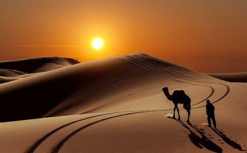 Đẹp mê hồn những vùng sa mạc nổi tiếng thế giới - Ảnh 7
