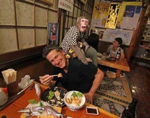 10 nhà hàng lạ lùng nhất thế giới - Ảnh 11