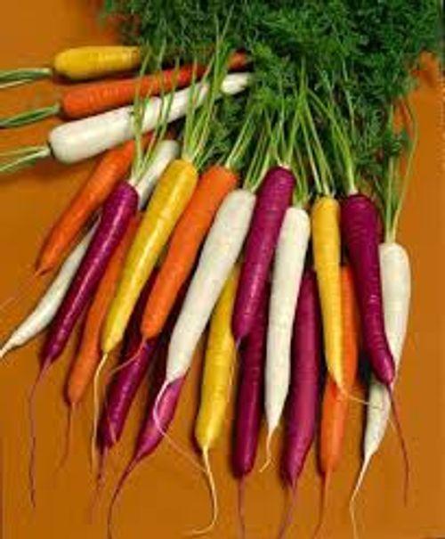 10 sự thật thú vị và ít biết về cà rốt - Ảnh 2