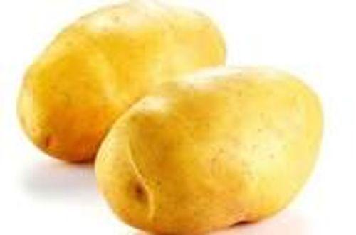 Lợi ích làm đẹp tuyệt vời từ khoai tây - Ảnh 1