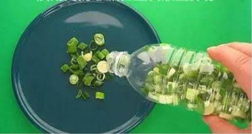 Mẹo bảo quản thực phẩm mà không cần tủ lạnh - Ảnh 10