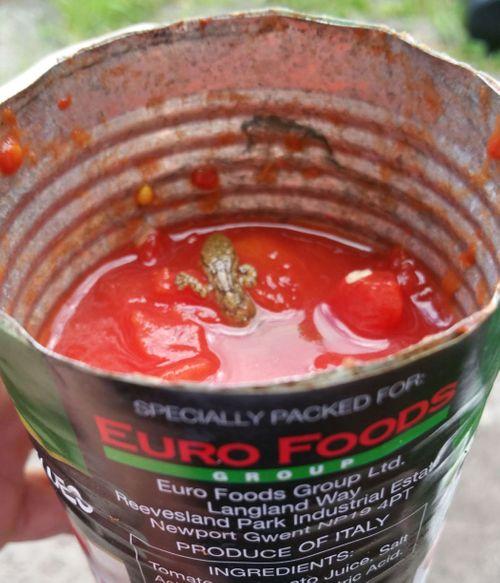 Kinh hoàng thấy thằn lằn chết trong hộp cà chua mua từ siêu thị - Ảnh 1