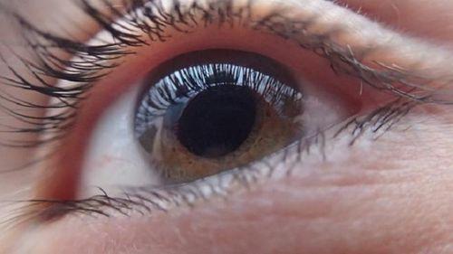 Bệnh mù lòa: Đã tìm ra phương pháp chữa trị - Ảnh 1