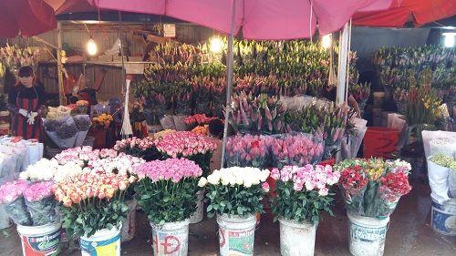 Chợ hoa Quảng Bá nhộn nhịp trước ngày 8/3 - Ảnh 5
