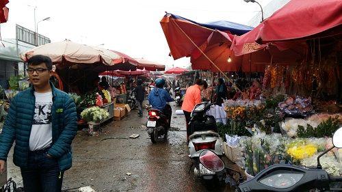 Chợ hoa Quảng Bá nhộn nhịp trước ngày 8/3 - Ảnh 11