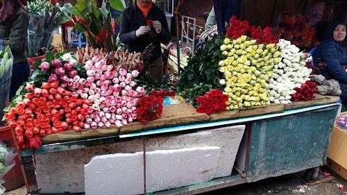 Chợ hoa Quảng Bá nhộn nhịp trước ngày 8/3 - Ảnh 6
