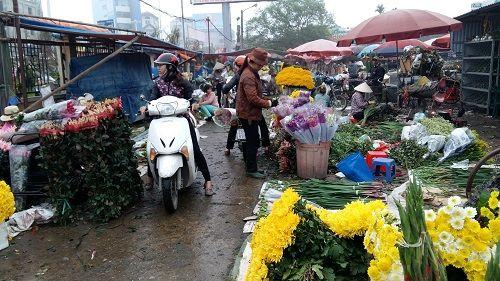 Chợ hoa Quảng Bá nhộn nhịp trước ngày 8/3 - Ảnh 1