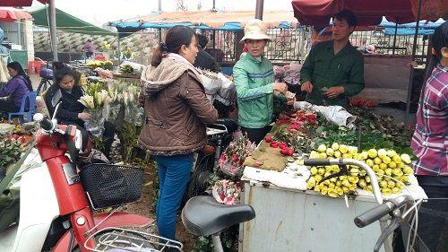Chợ hoa Quảng Bá nhộn nhịp trước ngày 8/3 - Ảnh 2