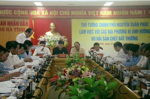 Thủ tướng chỉ đạo tại Hà Tĩnh: Không bao che một ai gây ra nguyên nhân cá chết - Ảnh 1
