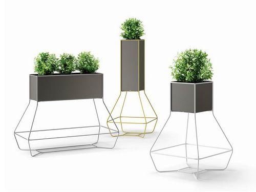 Những chậu cây xanh đẹp tuyệt giúp nhà bạn đầy sức sống - Ảnh 6