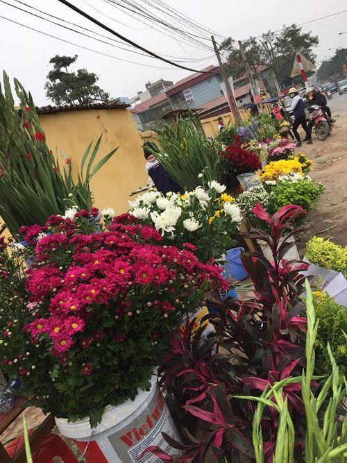 """Người bán hoa khóc ròng vì khách đợi 30 Tết mới… """"chơi"""" hoa - Ảnh 1"""