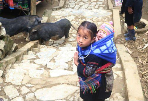 Xót lòng trẻ bị lạm dụng để kiếm tiền ở thiên đường du lịch Sa Pa trong cái rét cắt da cắt thịt - Ảnh 6