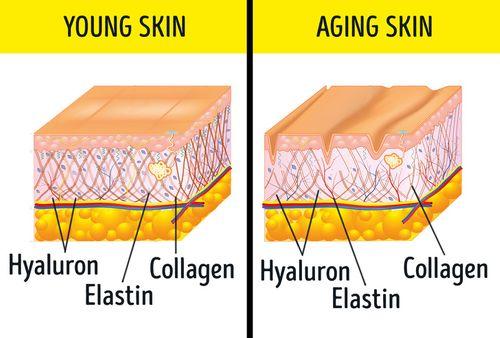 Tuyệt chiêu giúp da luôn mịn màng vừa đơn giản, hiệu quả và không tốn tiền - Ảnh 1