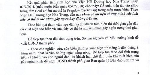 Vụ mẩn ngứa hàng loạt khi tắm biển Đà Nẵng: Tiết lộ về kết quả phân tích - Ảnh 1
