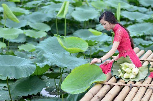 """Ngất ngây vẻ đẹp """"nghiêng nước nghiêng thành"""" nữ sinh xứ Tuyên - Ảnh 15"""