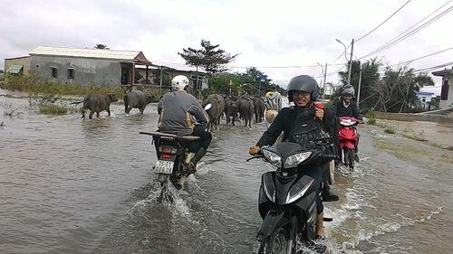 """Huế: Giao thông tê liệt, đường """"biến thành sông"""" vì mưa lũ - Ảnh 7"""