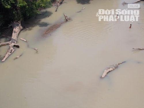 Đột kích con đường độc đạo xẻ rừng của lâm tặc tại Gia Lai - Ảnh 2