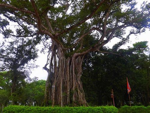 Độc đáo nghệ thuật kiến trúc kinh thành cổ Lam Kinh ở Thanh Hóa - Ảnh 5