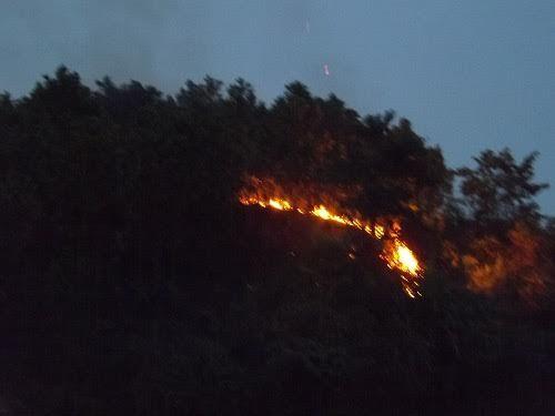Liên tiếp xảy ra cháy rừng ở Thanh Hóa - Ảnh 1