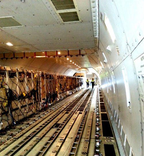 Vinamilk tiếp tục nhập bò sữa cao sản từ Úc về Việt Nam - Ảnh 1