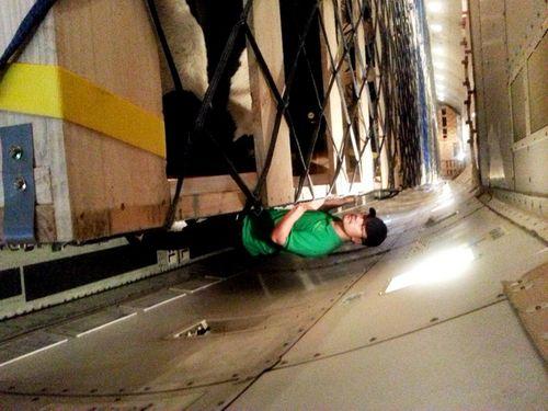 Vinamilk tiếp tục nhập bò sữa cao sản từ Úc về Việt Nam - Ảnh 3