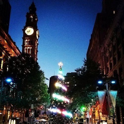 Cây thông khổng lồ, đèn kỷ lục Guinness rực rỡ Giáng sinh - Ảnh 1