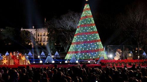 Cây thông khổng lồ, đèn kỷ lục Guinness rực rỡ Giáng sinh - Ảnh 12