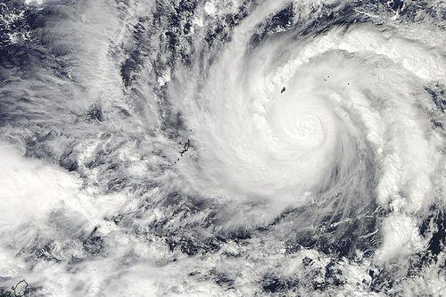 Siêu bão Hagupit: Dân Philippines đổ xô đi mua hàng tích trữ - Ảnh 3