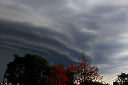 Hình ảnh đáng sợ về những tia sét trong cơn bão ở Sydney - Ảnh 6