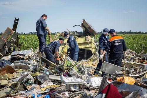 Hà Lan nhận dạng 292 thi thể nạn nhân MH17 - Ảnh 1