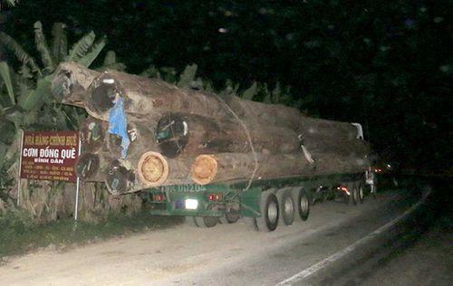 Hải Phòng: Bắt đoàn xe quá tải chở quá tải gấp 4 lần cho phép - Ảnh 1