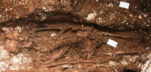 Hà Tĩnh: Phát hiện 3 bộ di cốt người cổ có niên đại 5.000 năm - Ảnh 4