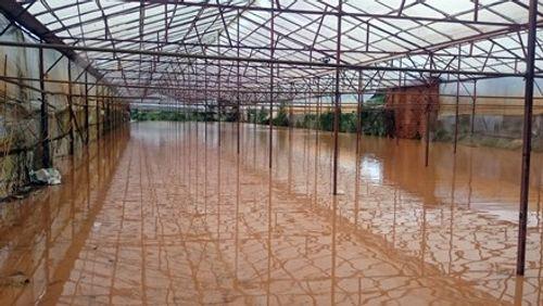 Đà Lạt ngập sâu trong nước sau trận mưa lớn - Ảnh 2