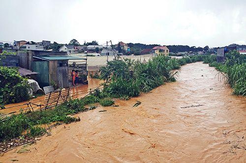 Đà Lạt ngập sâu trong nước sau trận mưa lớn - Ảnh 1