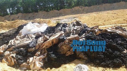 Chôn chất thải Formosa ở trang trại: Sở TNMT Hà Tĩnh đang né tránh - Ảnh 1