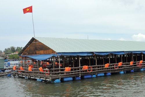 TP Vũng Tàu đình chỉ hoạt động hàng loạt nhà hàng nổi trên sông - Ảnh 1
