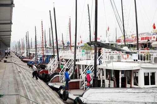 Tàu khách du lịch vịnh Hạ Long đã hoạt động lại sau bão - Ảnh 1