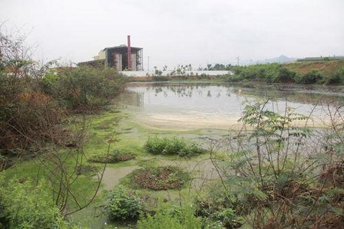 Tổng thanh tra các dự án có hệ thống xả thải lớn trên cả nước - Ảnh 1