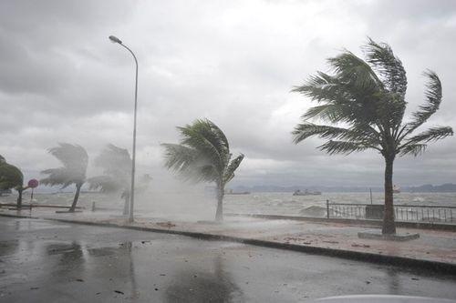 Dự báo thời tiết hôm nay 12/9: Áp thấp nhiệt đới nguy cơ mạnh lên thành bão  - Ảnh 1