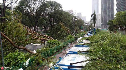 Siêu bão Meranti đổ bộ Trung Quốc, máy bay Boeing bị thổi dạt - Ảnh 1