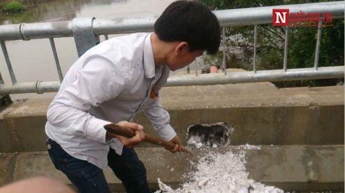 Vì sao cầu 65 tỷ ở Hà Nội bị nghi làm bằng 'bê tông cốt xốp' - Ảnh 6